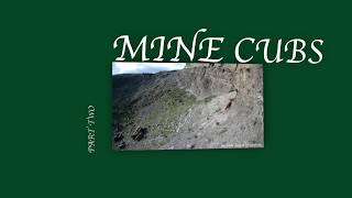Mine Cubs part two