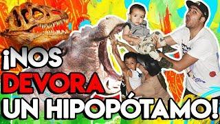 Zoológico y huesos de dinosaurio reales en San Antonio Texas
