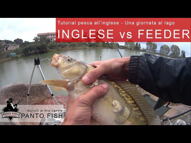 Inglese Vs Feeder - Una giornata al lago