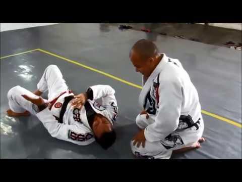 Jiu Jitsu 150 Técnicas Feu Bjj