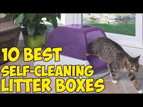 10 Best Self Cleaning Litter Boxes in 2019 🐈