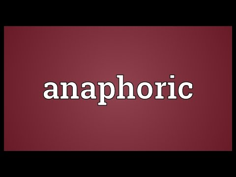Anaphoric Meaning