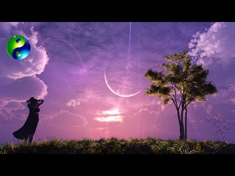 Relaxing Music: Reiki Music; Yoga Music; New Age Music; Relaxation Music; Spa Music; 🌅 649