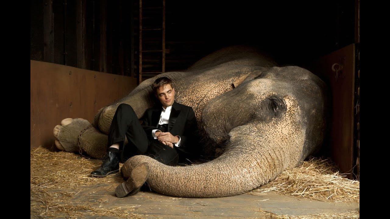 Wasser Fur Die Elefanten Robert Pattinson Deutsch German Kritik Review Trailer Link Hd Youtube