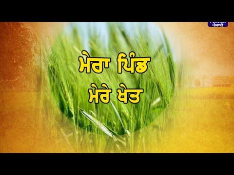 Mera Pind Mere Khet | 28 October 2019 | Latest Show | DD Punjabi