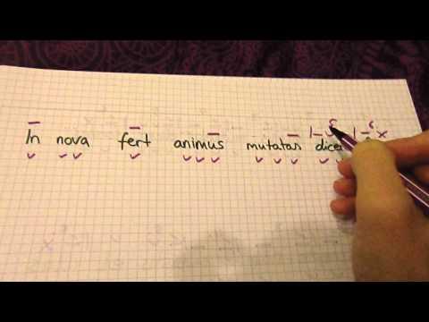 Metrum-Latein