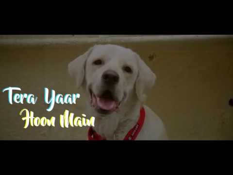 Tera Yaar Hoon Main Female Version | Sanjana Kalmanje | Dedicated to Animal Lovers