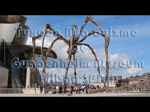 Gang skaters at Guggenheim Museum Bilbao