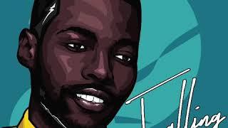 Mduduzi Feat Spiritbanger- Falling Official Audio