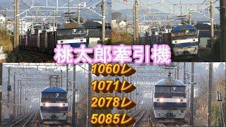 2020/02/22 JR貨物 朝7時台の貨物列車4本 5085レにJFEスチール無蓋イルカコンテナ