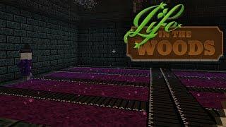 LIFE IN THE WOODS ⛺️ 126 • Erweiterung des Baugebiets