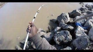 Bank fishing with Dead Red Spray for Channel Cats! #catfishing