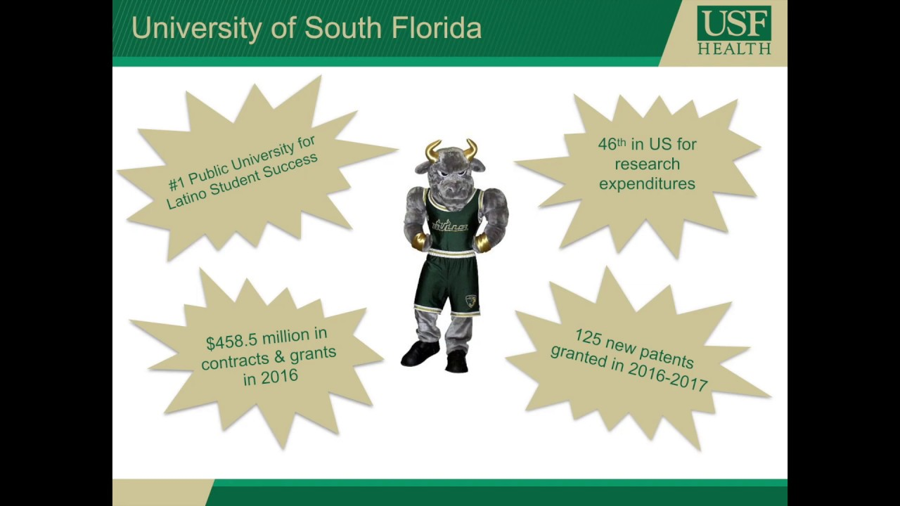 Usf Masters Programs >> Usf College Of Pharmacy Graduate Programs