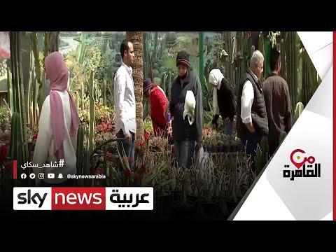 عشاق الطبيعة يتوافدون على حديقة الأورمان | #من_القاهرة  - نشر قبل 9 ساعة