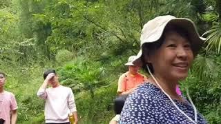 頂石棹步道群之旅(錄影成影片)-家族聚會