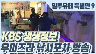 [밀루유떼]실내바다낚시터 우미즈리 낚시포차 kbs 생생정보와 함께!