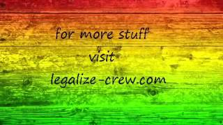 Ziggy Marly ft  Sean Paul   Three Little Birds With Lyrics