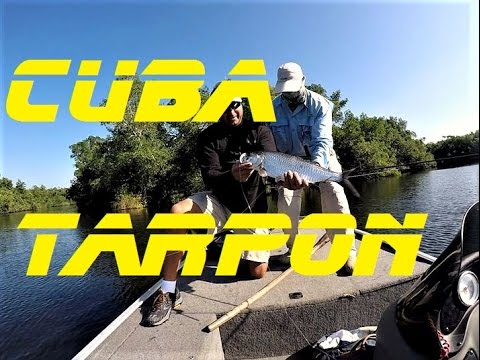 Cuba tarpon fishing