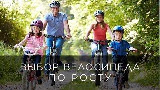 выбор велосипеда по росту - советы от STELS-RF.ru