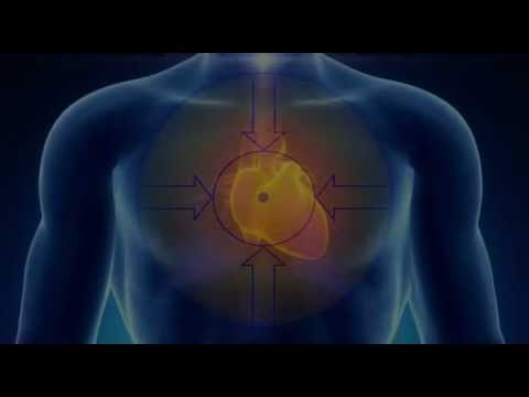 Heart Harmonics™  The Science & Art of Mindfulness & Mastery