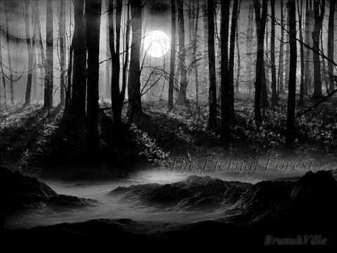 Emotional Dark Music - The Eternal Forest