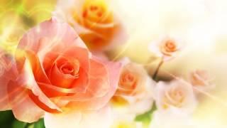 Благодаря этой мантре обретете любовь и счастье в отношениях ! thumbnail