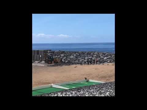 Limpezas na praia da Calheta