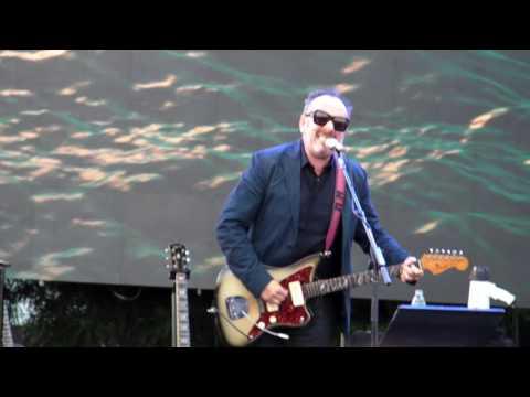 Elvis Costello - I WANT YOU @ Ohana Festival 08-27-16