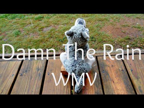 Damn The Rain || WMV