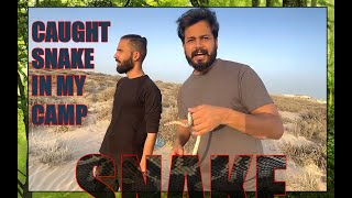 CAUGHT SNAKE IN MY CAMP | RESCUE | AZLAN SHAH
