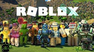 Gameplay Roblox Vet Simulator Fr