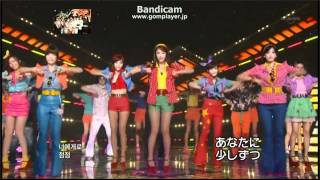 T-ara Roly-Poly  最強LIVE!! (メンバー名前字幕あり) thumbnail