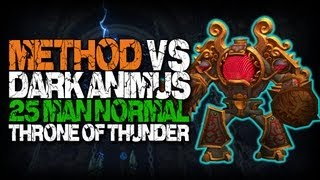 Method vs Dark Animus (25 Normal)