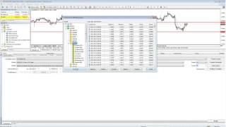 Il trading automatico con gli expert advisor gestione, backtesting e indicatori 20131121 1701 1