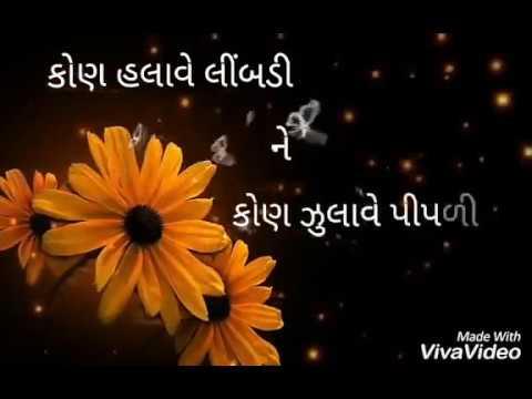 Kon halave limdi ne kon zulave pipli | Gujarati song | WhatsApp status video|