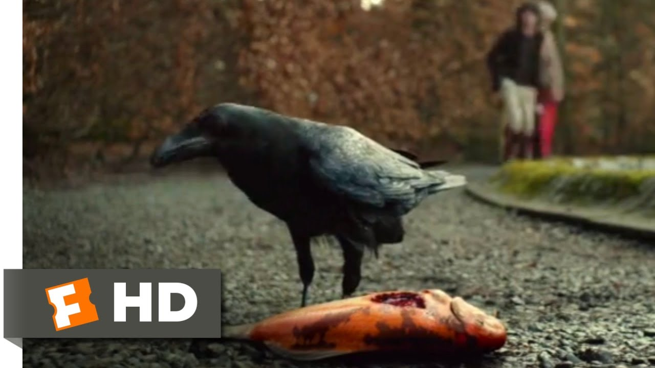 Download The Turning (2020) - The Crow and the Koi Scene (3/10)   Movieclips