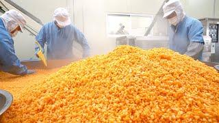 어린시절 먹던 논두렁 과자!? 하루 5,000봉지 만드는 옥수수과자 공장┃Fried Corn Snack, Korean street food