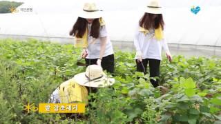 KB국민은행-인턴행원 농활