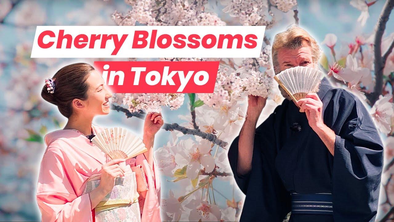 Sakura Season in Tokyo: Hanami at Happo-en Garden, an Oasis in the City Center