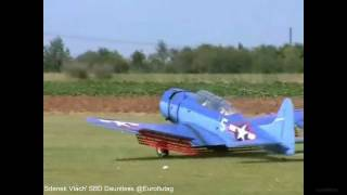 Giant RC SBD Dauntless