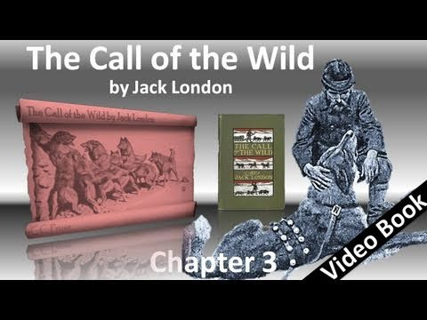 Chapter 03 - The Call of the Wild by Jack London - The Dominant Primordial Beast