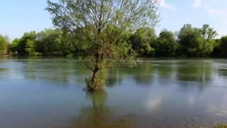 Proljeće na rijeci Kupi.