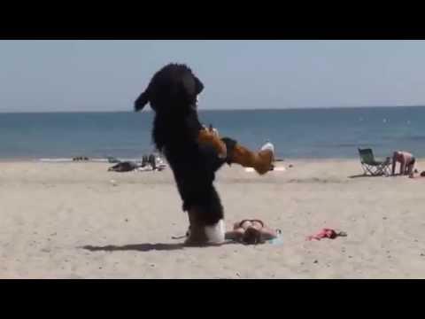 Одетые девушки имальчикиголые на пляж фото 238-967
