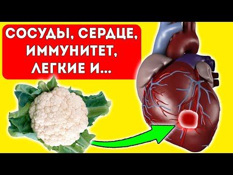 Шок! Найден универсальный продукт! Мощная реакция сердца, легких, ЖКТ и...