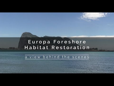 Gibraltar's Europa Point Foreshore Habitat Restoration