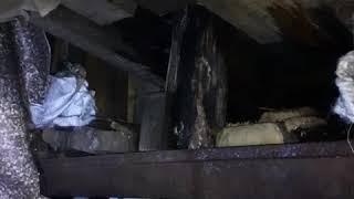 Реанимация крышы гаража