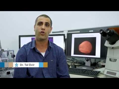 Dr. Tal Dvir