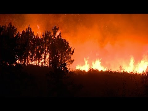 Living with Fire - Wildland Fire Science