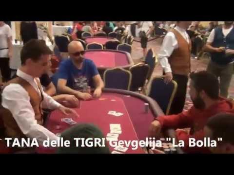 Tana delle Tigri Gevgelija: Andrea Adamo esce in zona bolla!