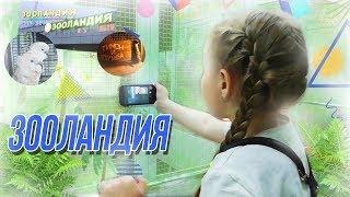 VLOG: Самый Веселый Контактный Зоопарк для детей МНОГО животных / ЗООЛАНДИЯ